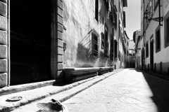 Silent_Street